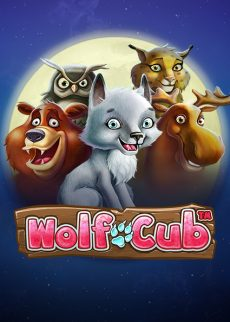 Try Wolf Cub Casino Slot Now!