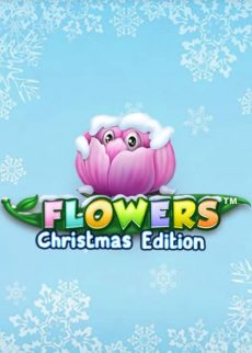 Try Flowers Christmas Now!