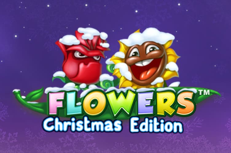 Flowers Christmas Slot thumbnail