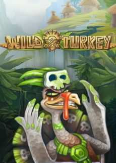 Try Wild Turkey Slot Now!