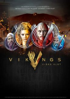 Try Vikings Video Slot Game Now!