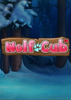Try Wolf Cub Kolikkopeli Now!