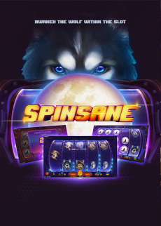 Try Spinsane™ Now!