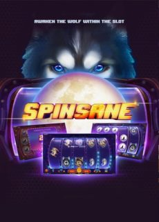Try Spinsane Kolikkopeli Now!