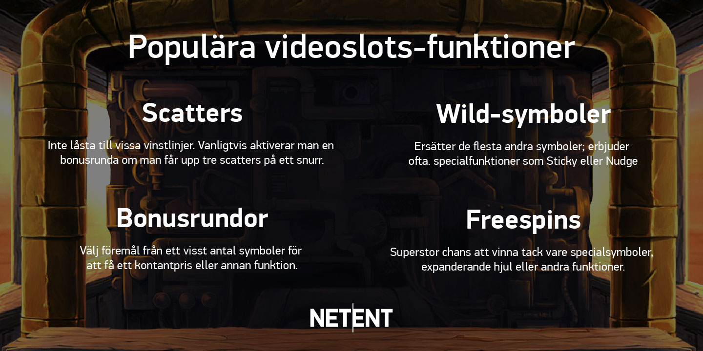Funktioner i videoslots